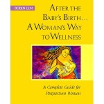 After the Baby's Birth...A Woman's Way to Wellness: A Complete Guide for Postpartum Women, Robin Lim